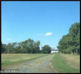 1810 Oak Grove Road Photo #8