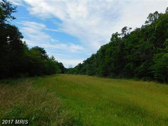 16735 Lower Town Creek Road SE Photo #12