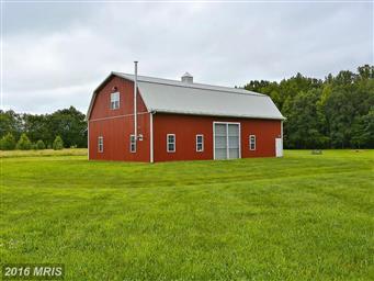 516 Goose Landing Farm Lane Photo #6