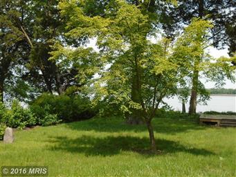 436 Pear Tree Point Road Photo #16