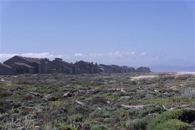 236 Monterey Dunes Way Photo #20