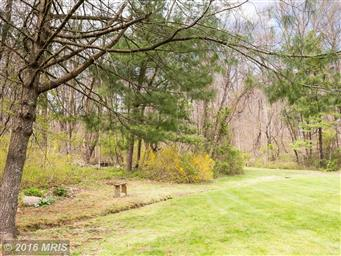 346 Riley Hollow Road Photo #24