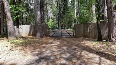 5283 Deer Trail Photo #13