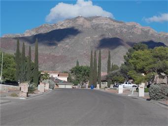 6629 El Parque Drive Photo #34