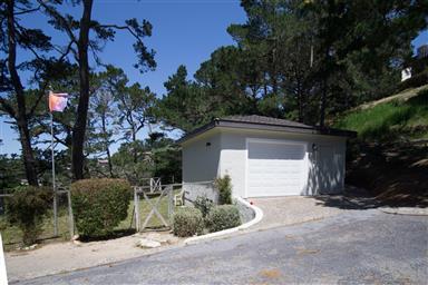 25140 Pine Hills Drive Photo #31