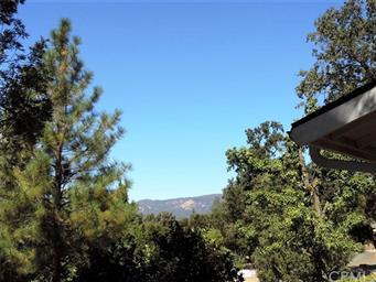 40731 Goldside Drive Photo #19