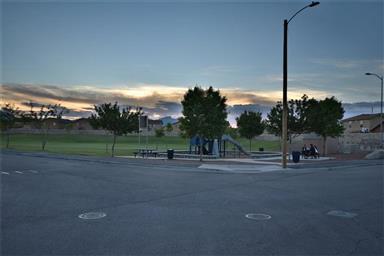 7356 Mesquite Sun Lane Photo #28