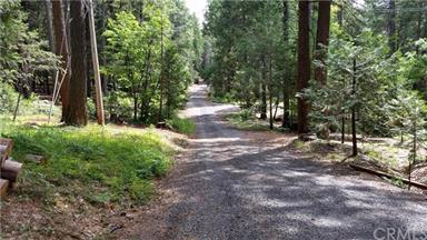 5283 Deer Trail Photo #25