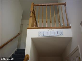 13265 Whispering Spring Drive Photo #6