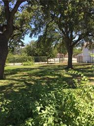 1332 Morningside Avenue Photo #19