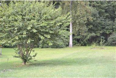 587 Wynn Wood Circle Photo #19