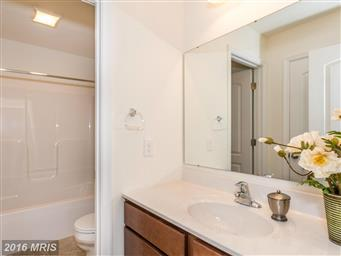 1180 Pearl Dr Photo #18