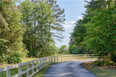 3264 County Road Se 4115 Photo #2