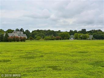 516 Goose Landing Farm Lane Photo #8