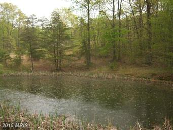 9357 Cacapon Road Photo #6