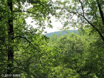 61 Mountain Breeze Lane Photo #25