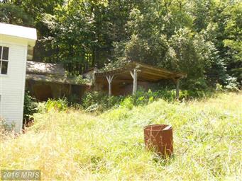 10421 Lunice Creek Highway Photo #5