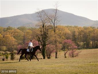 1482 Zachary Taylor Highway Photo #26