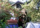 116 Rose Lane, Saint Helena, CA 94574