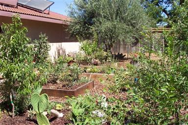2655 Mediros Lane Photo #33