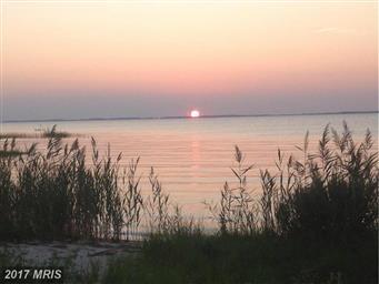 9050 Fishing Island Road Photo #12