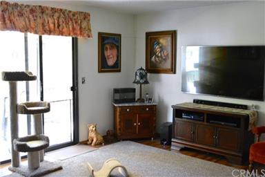 40485 Goldside Drive Photo #10