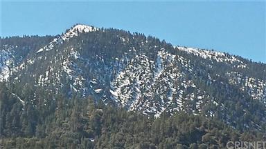 15432 Shasta Way Photo #25