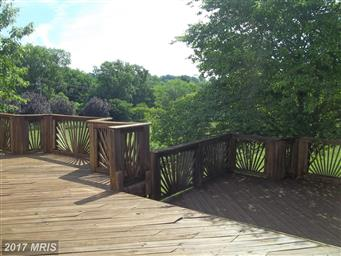 19103 Edgehill Place Photo #26