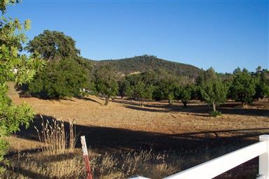 2655 Mediros Lane Photo #44