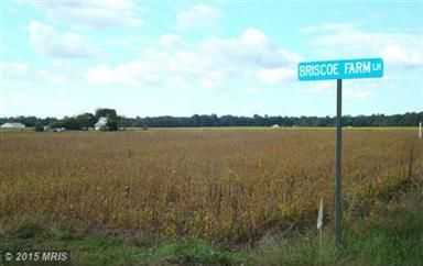 0 Lot2 Parcel Second Brisco Farm Lane #CM9523277 Photo #6