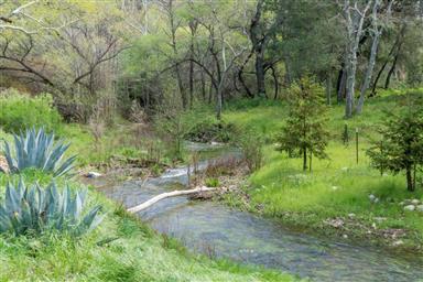 45650 Carmel Valley Road Photo #27