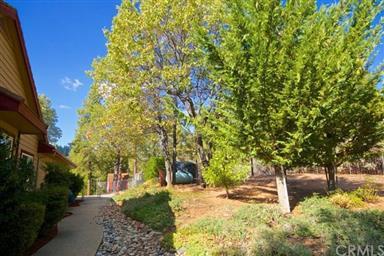 52976 Pine Hill Lane Photo #35