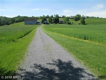 7191 GREAT COVE RD Photo #18
