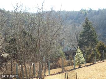 290 White Oak Trail Photo #7