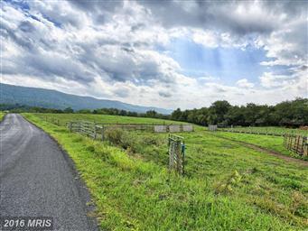 13198 Creek Road Photo #20