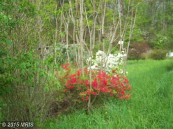9357 Cacapon Road Photo #15