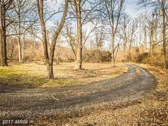 115 Bear Wallow Road Photo #19
