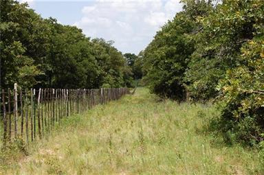 TBD Two Bush Road Photo #12