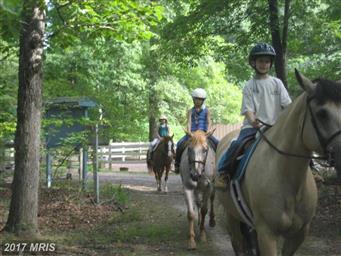 119 Monticello Circle Photo #29