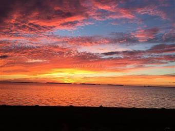 4498 Sunset Drive Photo #45