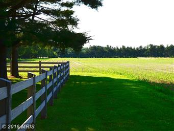5268 Quaker Neck Road Photo #17