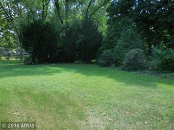 29297 Hawkes Hill Road Photo #20