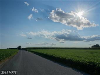 500 Country Tea Lane Photo #19