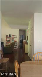 46129 Seabiscuit Court Photo #11