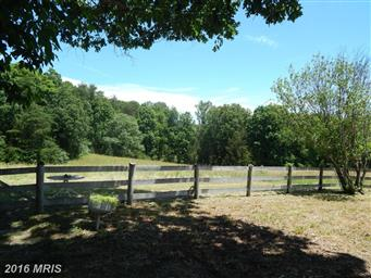 21465 Countryside Lane Photo #12
