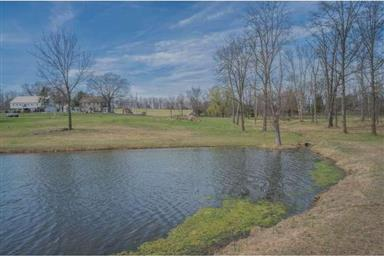 320 W CAMPING AREA RD #LOT 9 Photo #13