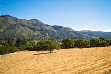 7985 Carmel Valley Road Photo #16