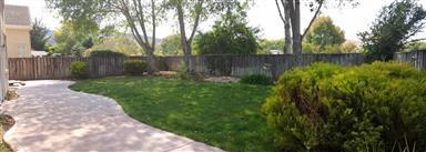 21952 Green Sage Court Photo #11