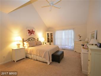 8668 Mulberry Drive Photo #11