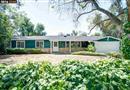501 Bobbie Drive, Danville, CA 94526